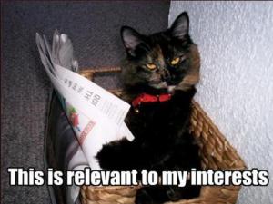catnewspaper